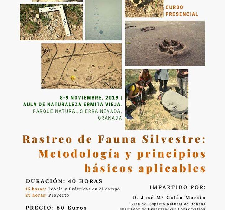 Rastreo de Fauna Silvestre: Metodología y Principios Básicos Aplicables
